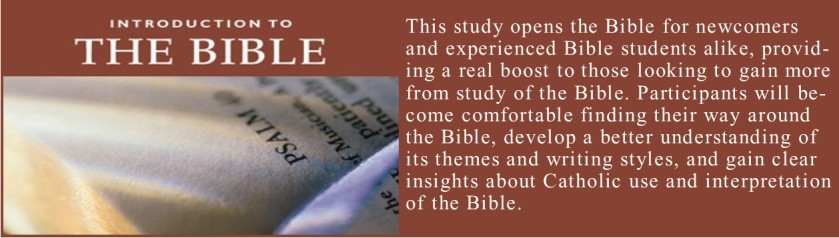 intro to Bible banner
