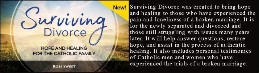 Surviving divorce banner